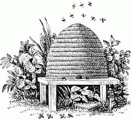 deseret bees