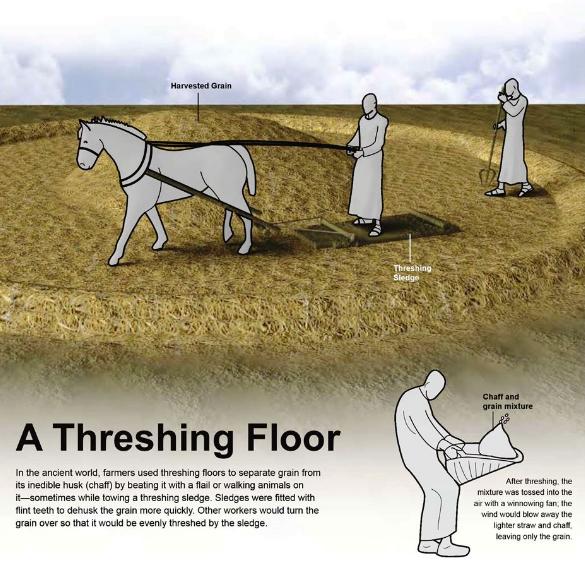 Define threshing floor 28 images threshing sorghum in for Meaning floor