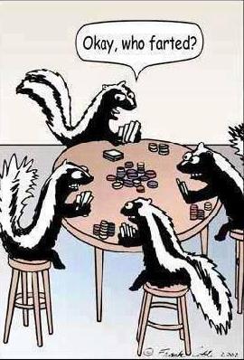 skunk fart
