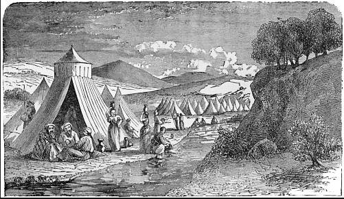 encampment 2