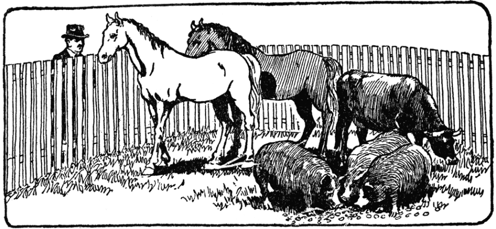 a corral or enclosure surrounded by a stockade fence.