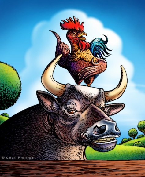 cock and bull story
