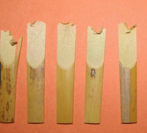 broken reeds