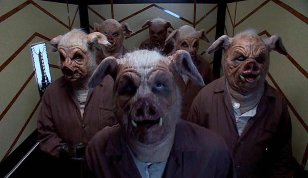 men as swine